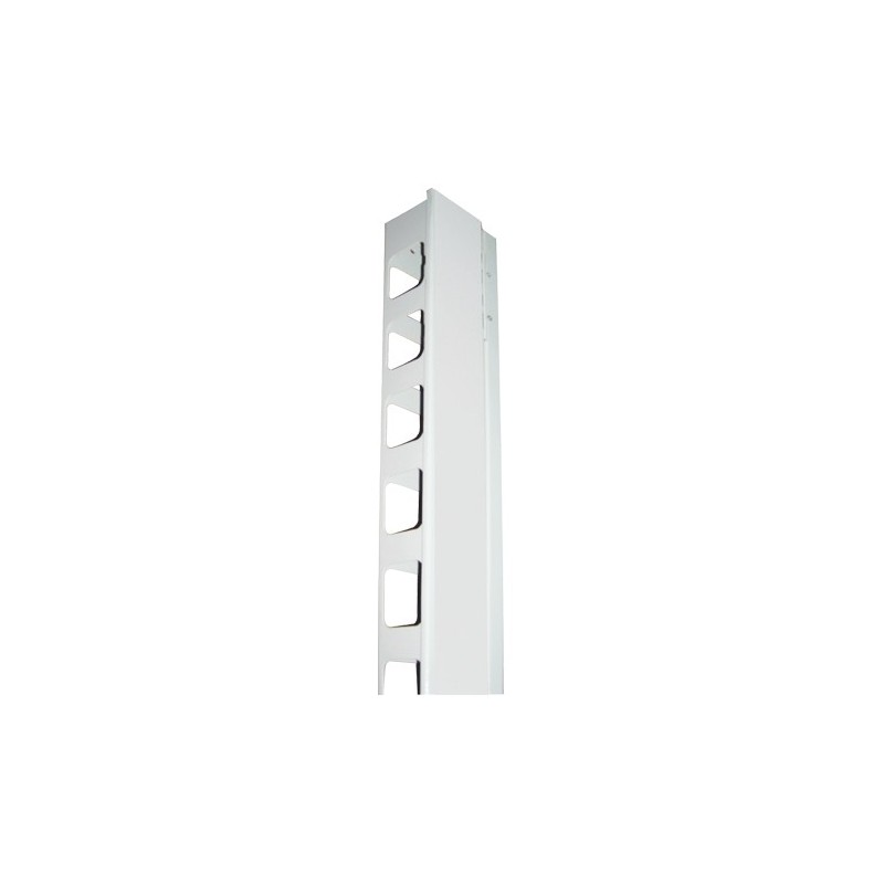 Organisateur de câbles vertical 42U Noir(2 pcs) Pour baie Lar 800  Accessoires baies et coffrets 100,22€Accessoires baies et...